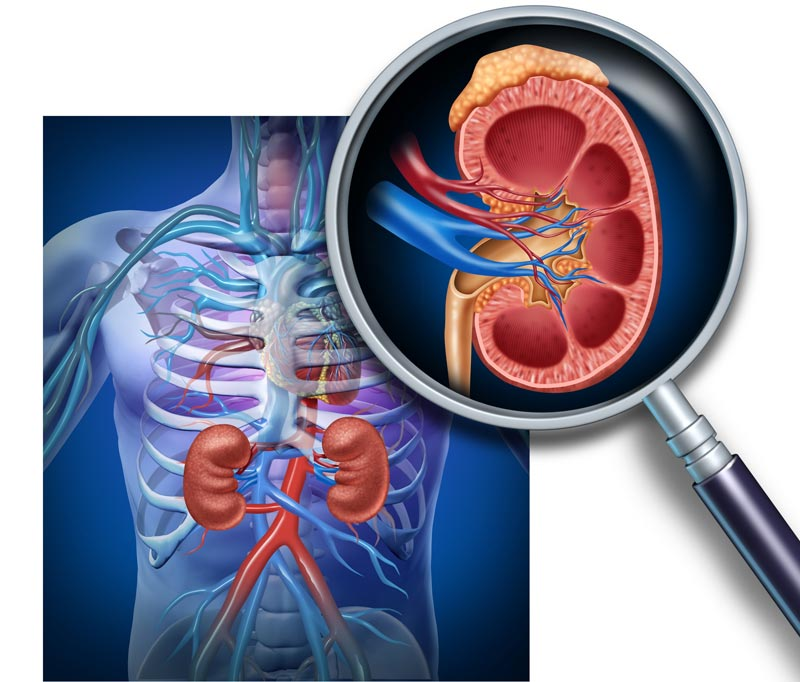nephrology-kidney-center-from-mission